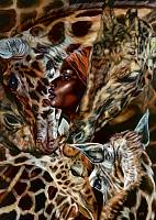 Melodie der Savanne, 2021,Öl auf Leinwand,140-100